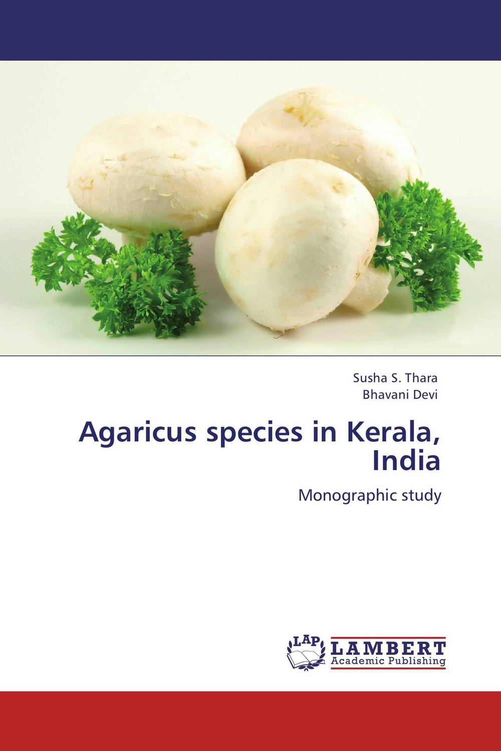 Agaricus species in Kerala, India 300counts x agaricus bisporus extract 30% polysaccharide powder 500mg free shipping