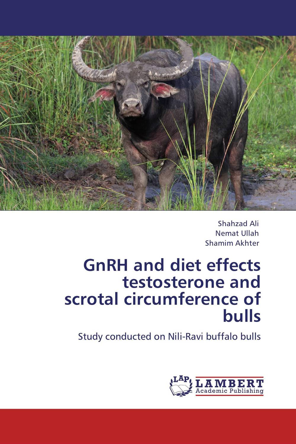 GnRH and diet effects testosterone and  scrotal circumference of bulls the second media age