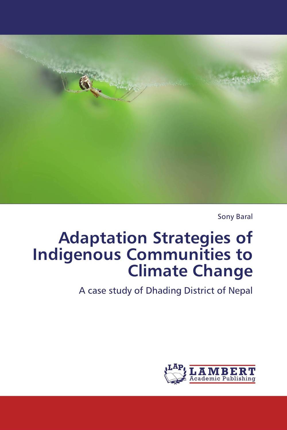 Adaptation Strategies of Indigenous Communities to Climate Change climate change initiatives and strategies