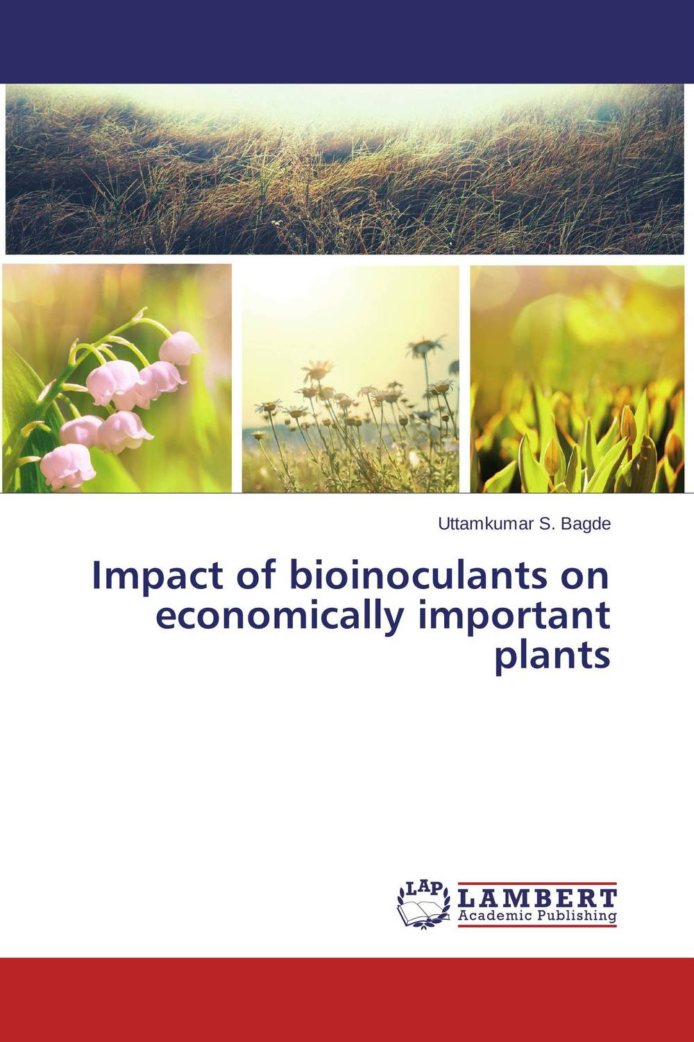 Impact of bioinoculants on economically important plants