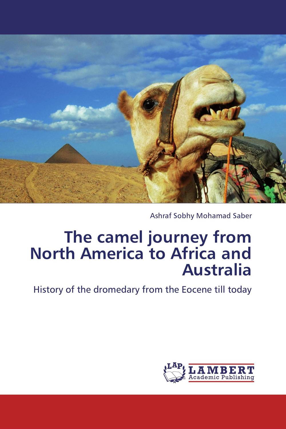 The camel journey from North America to Africa and Australia working good in south and north america support 850 1900mhz 3g usb rs232 modem