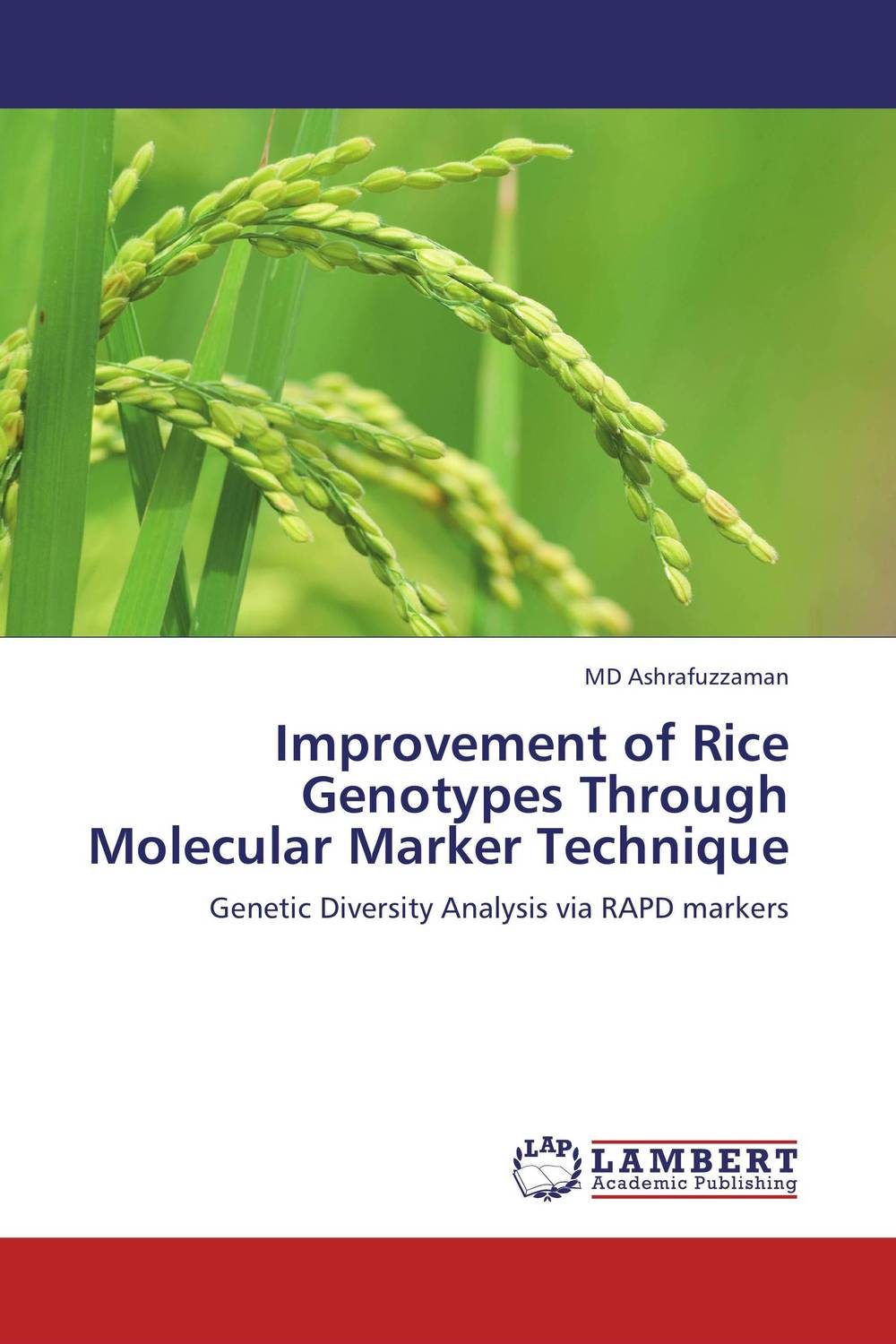 Improvement of Rice Genotypes Through Molecular Marker Technique vikas kumar singh morphological and molecular characterization of tgms lines in rice