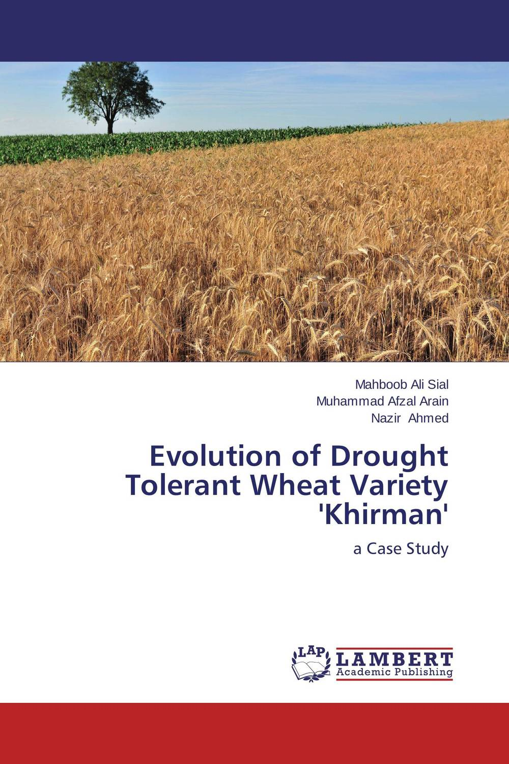 Evolution of Drought Tolerant Wheat Variety 'Khirman'