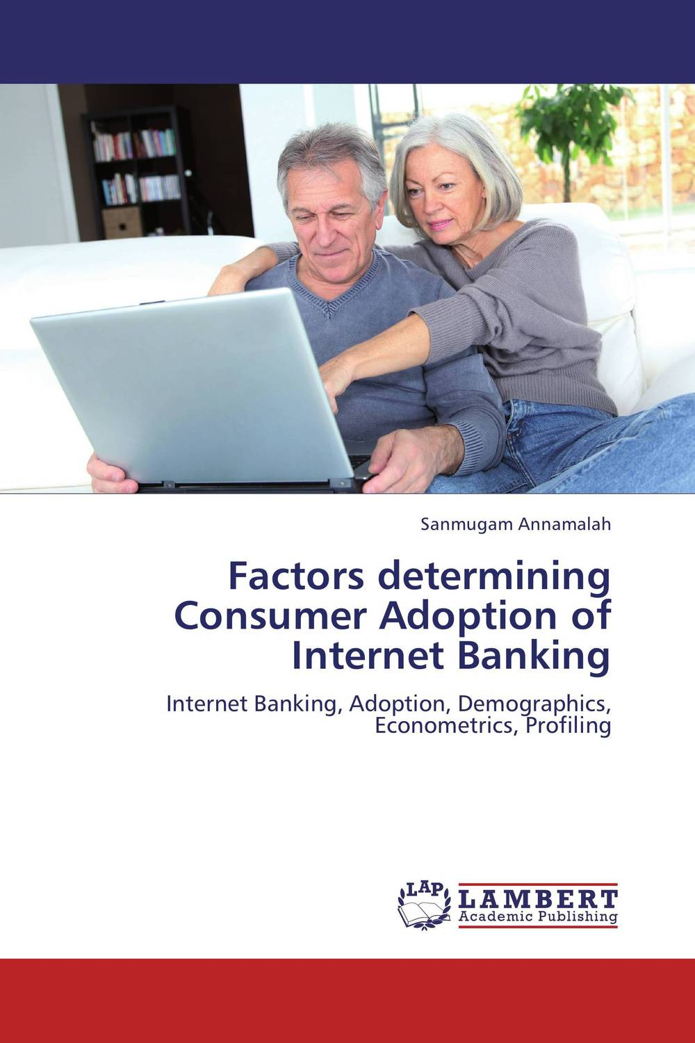 Factors determining Consumer Adoption of Internet Banking mining design patterns for internet banking architecture