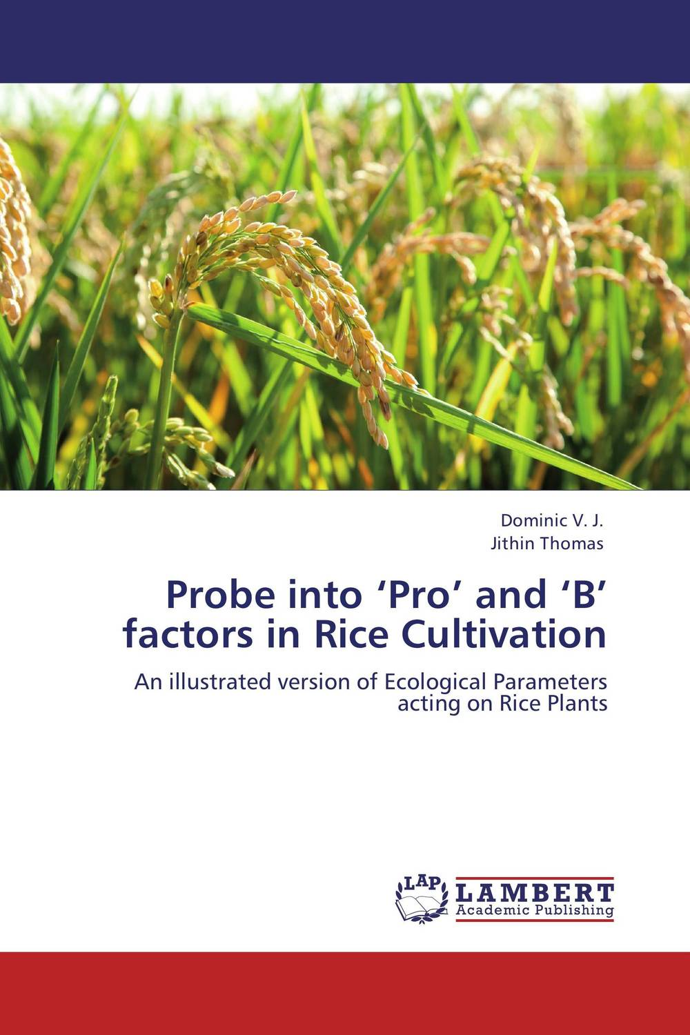 Probe into 'Pro' and 'B' factors in Rice Cultivation tillage system in rice cultivation
