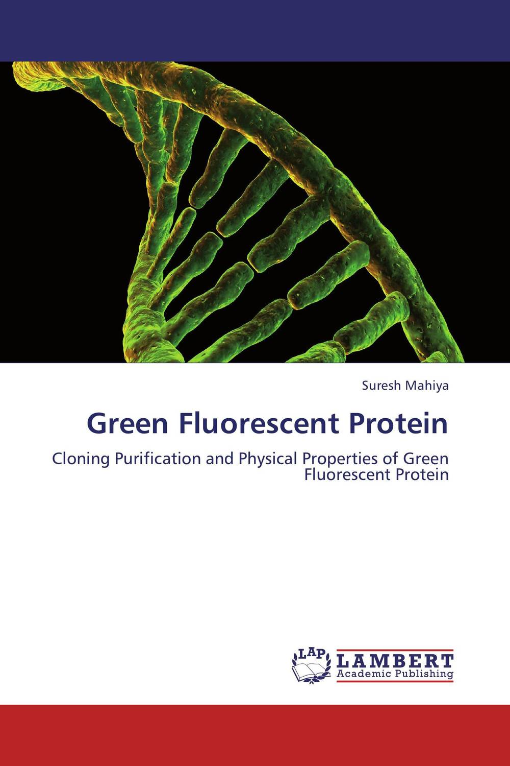 Green Fluorescent Protein population balance modelling of non native protein aggregation