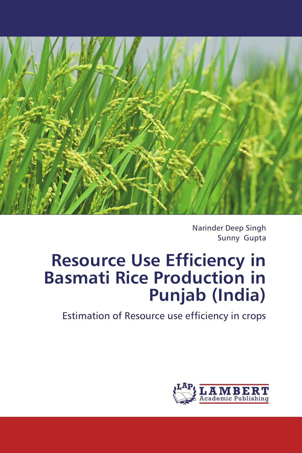 Resource Use Efficiency in Basmati Rice Production in Punjab (India) community resilience of village udekaran punjab india