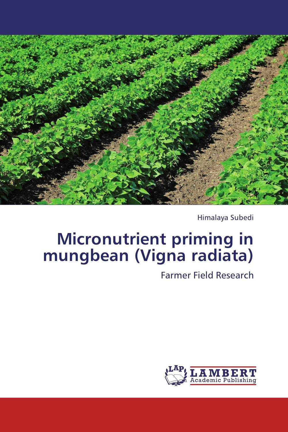 Micronutrient priming in mungbean (Vigna radiata) mohd mazid and taqi ahmed khan interaction between auxin and vigna radiata l under cadmium stress