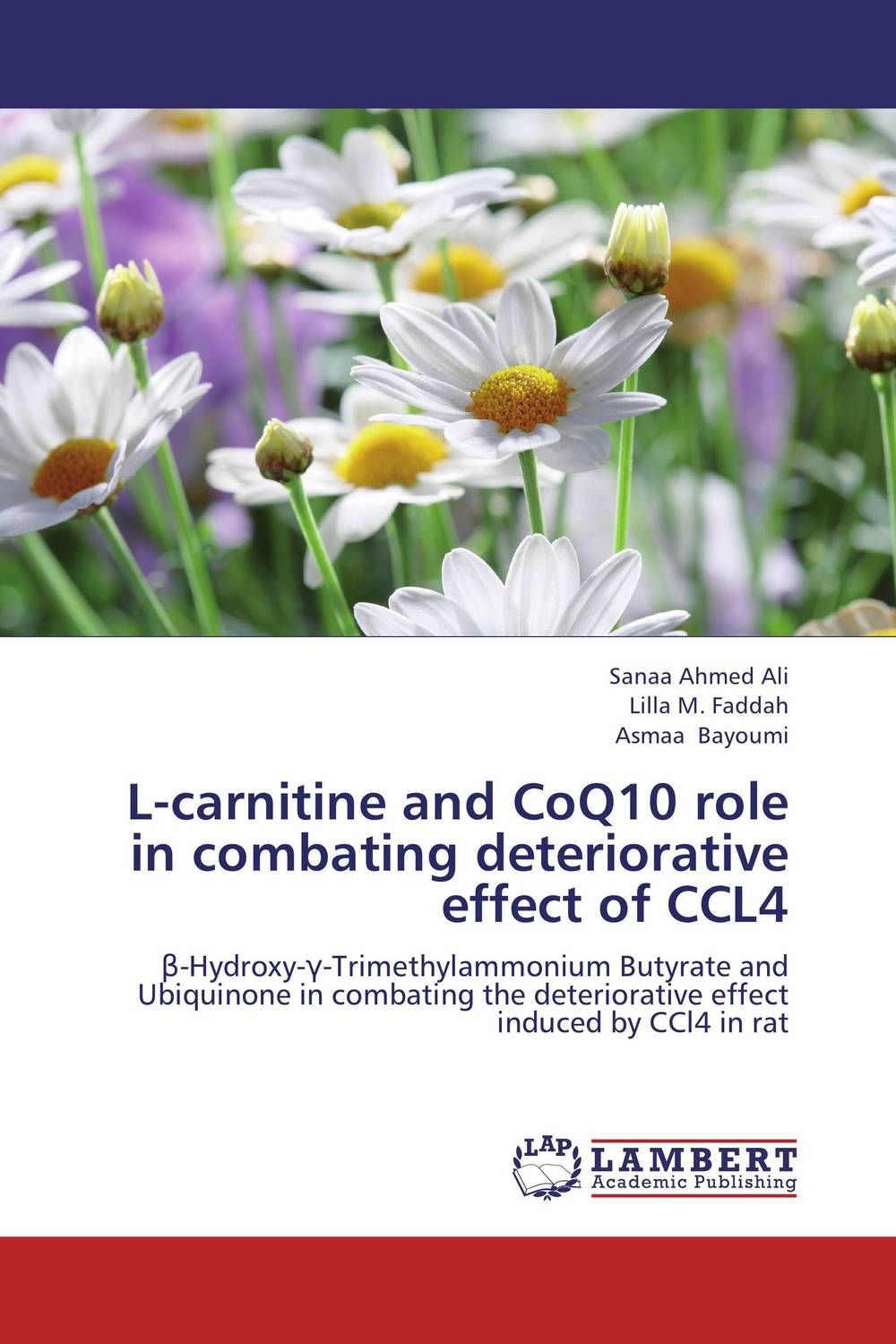 L-carnitine and CoQ10 role in combating deteriorative effect of CCL4 fatty liver imaging patterns and pitfalls