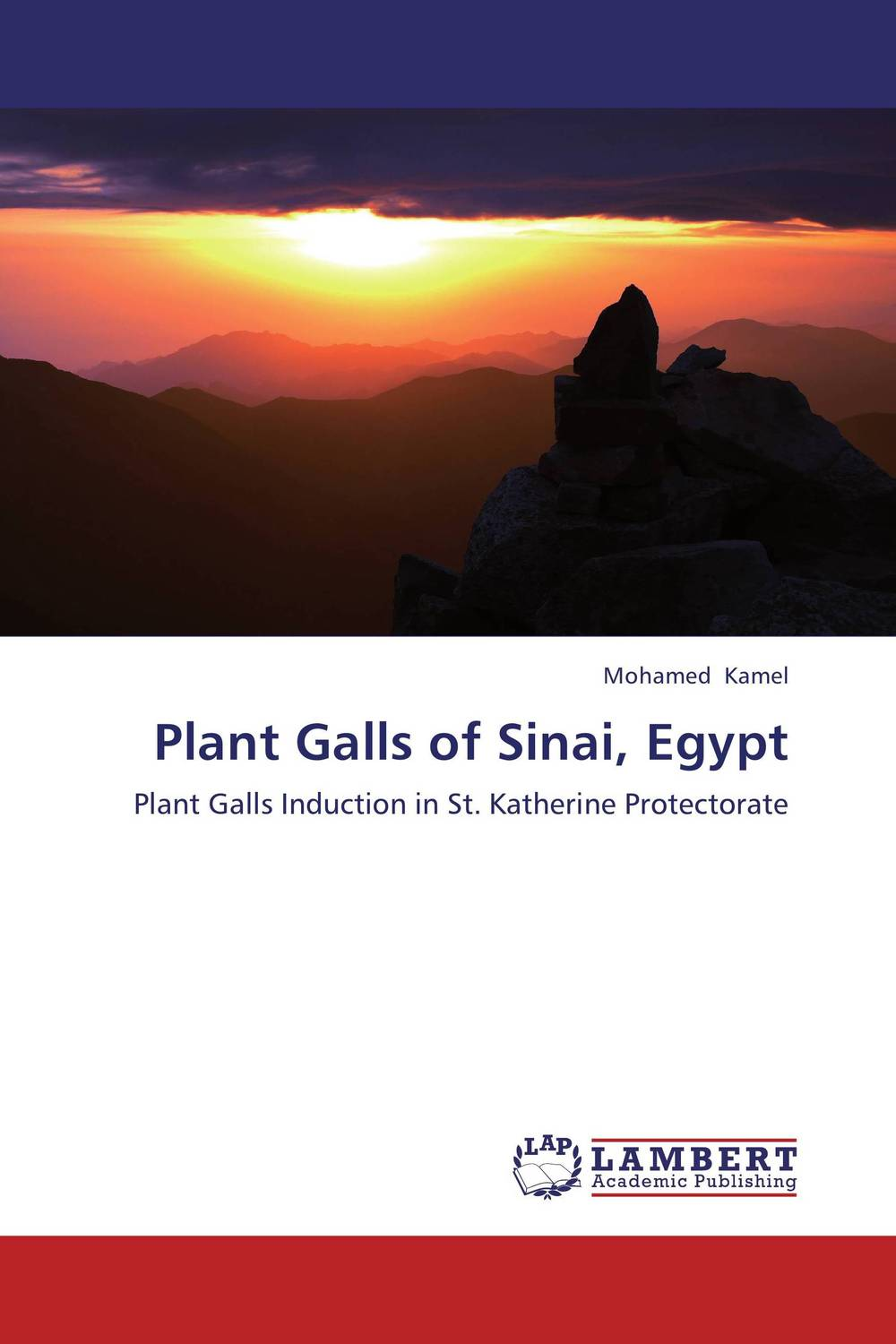 Plant Galls of Sinai, Egypt the twenty three
