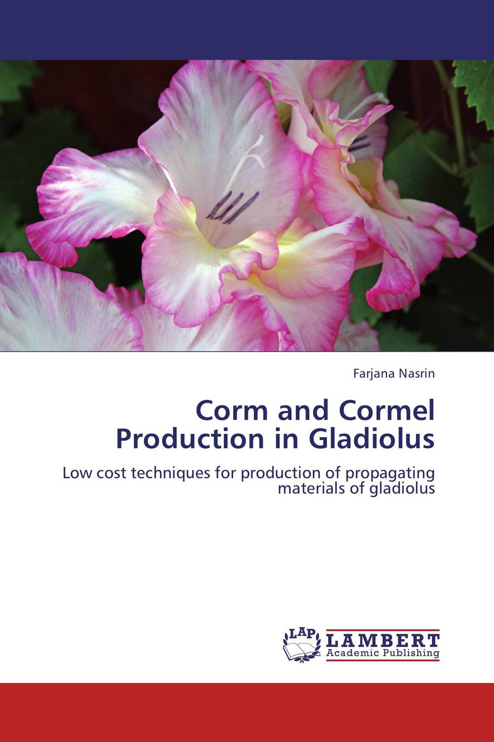 Corm and Cormel Production in Gladiolus mebelvia flowers via gladiolus 140х200