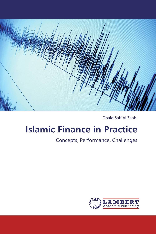 Islamic Finance in Practice islamic banking efficiency
