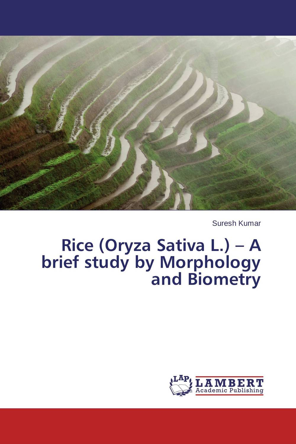 Rice (Oryza Sativa L.) – A brief study by Morphology and Biometry sanjeev kumar kiran pathania and pawan kumar sharma breeding of rice oryza sativa l