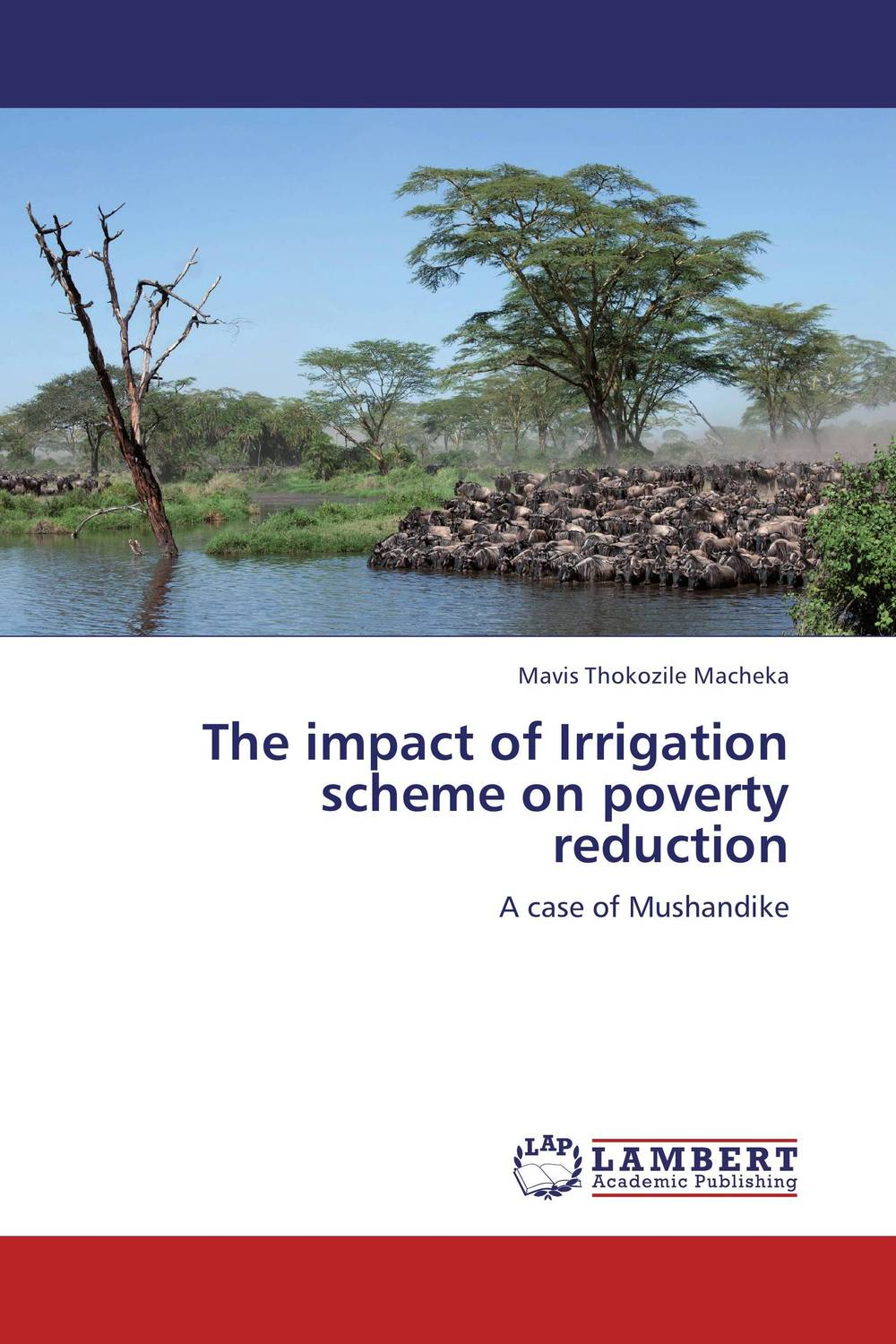 The impact of Irrigation scheme on poverty reduction impact of small scale irrigation schemes on poverty reduction