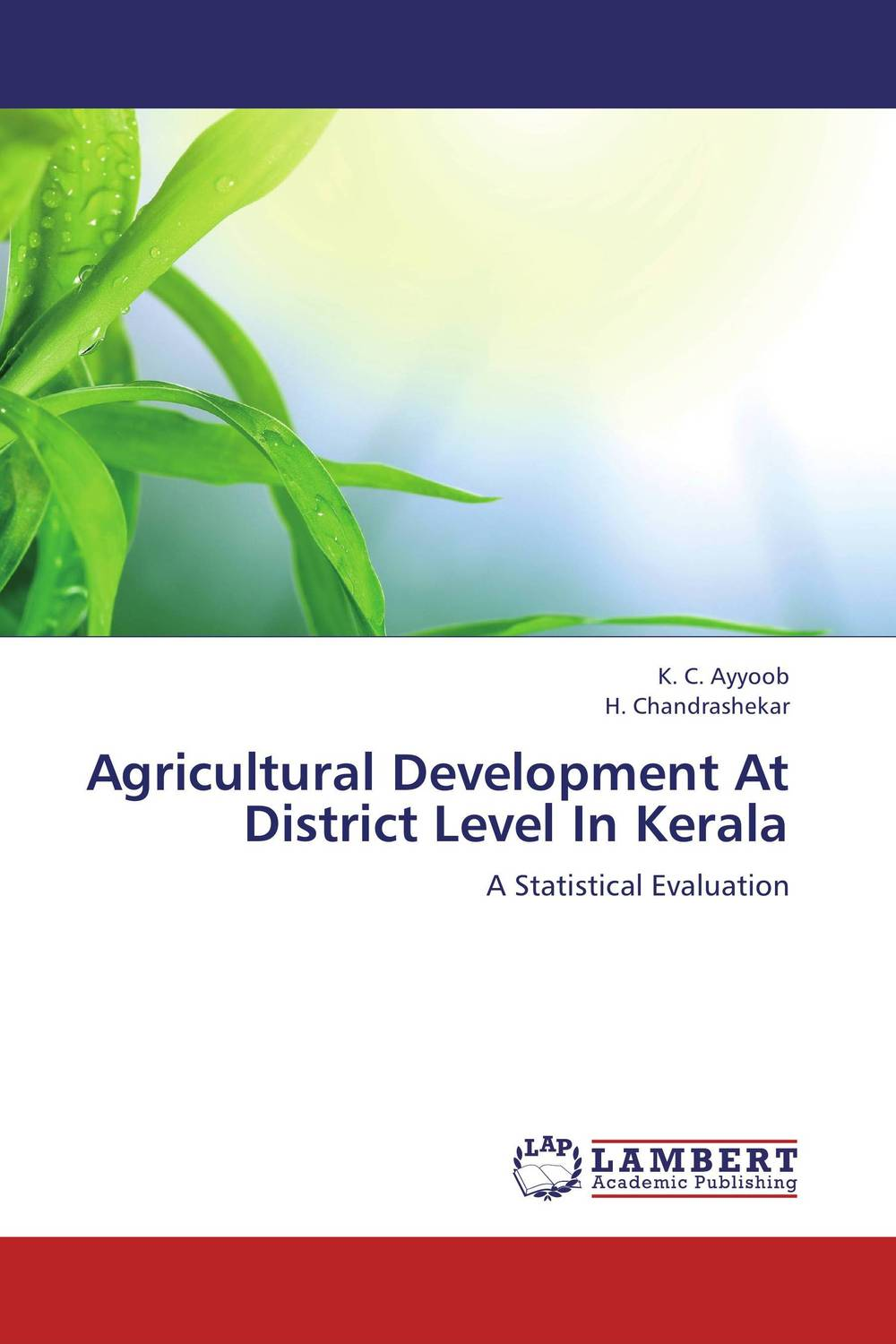 Agricultural Development At District Level In Kerala an incremental graft parsing based program development environment