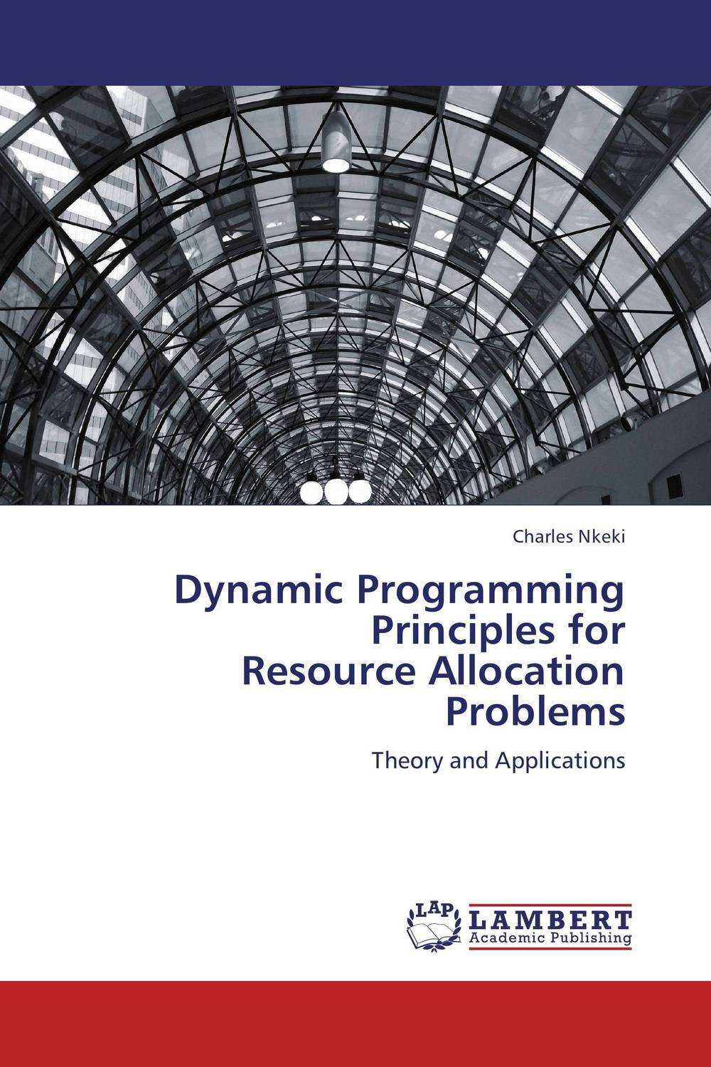 Dynamic Programming Principles for  Resource Allocation Problems recent trends for solving fuzzy multi objective programming problems