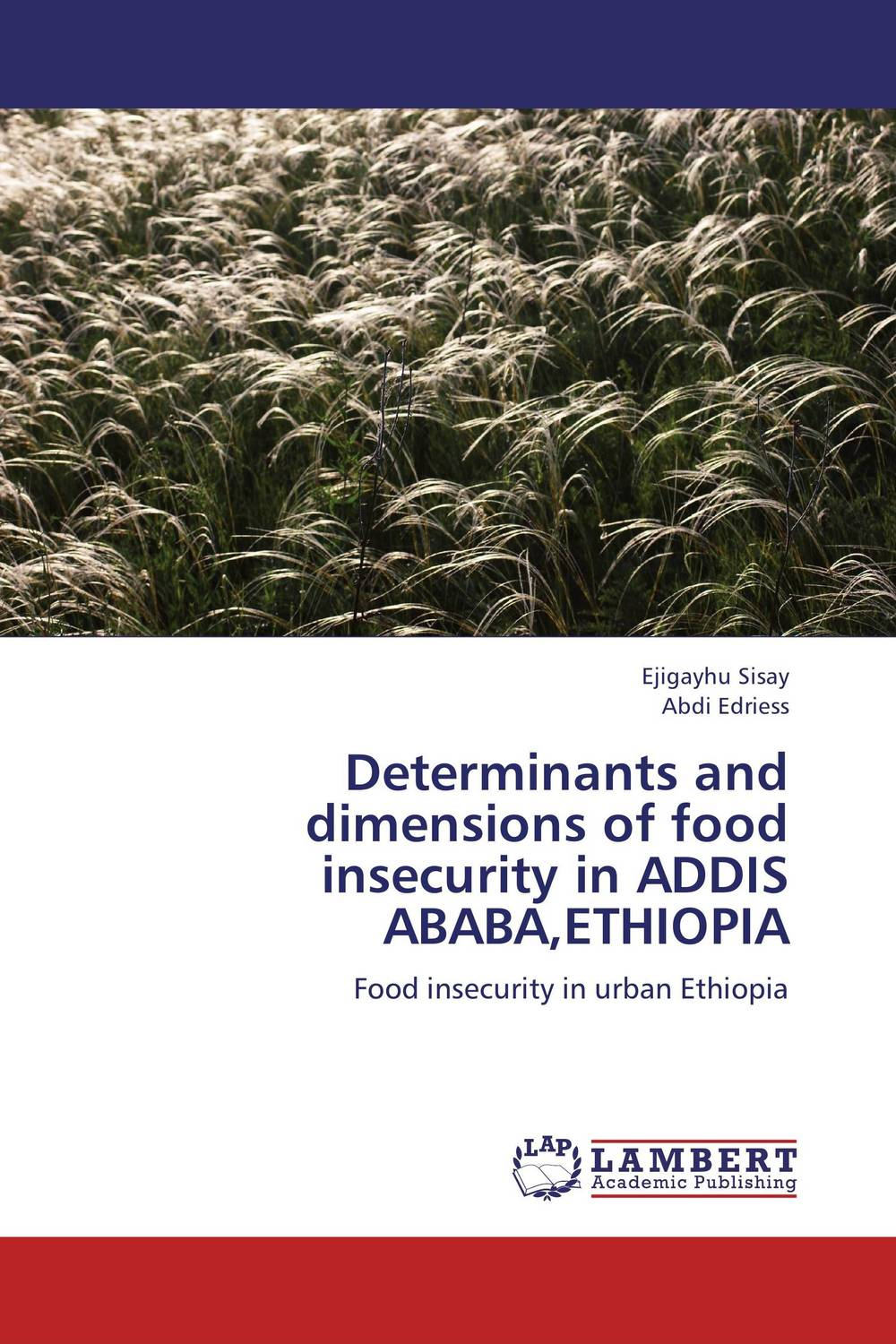 Determinants and dimensions of food insecurity in ADDIS ABABA,ETHIOPIA study of the urban drainage system in addis ababa