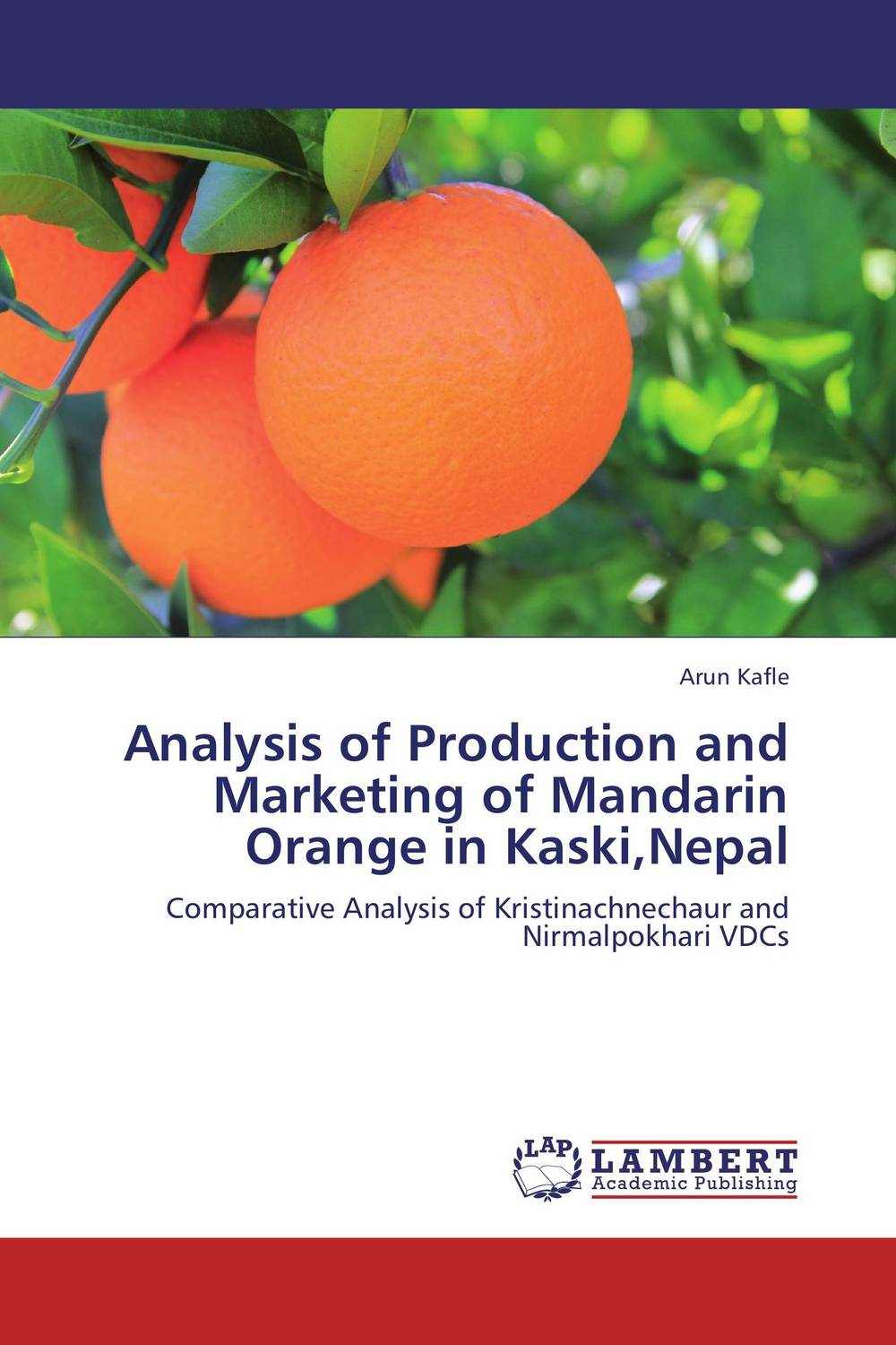 Analysis of Production and Marketing of Mandarin Orange in Kaski,Nepal adding value to the citrus pulp by enzyme biotechnology production