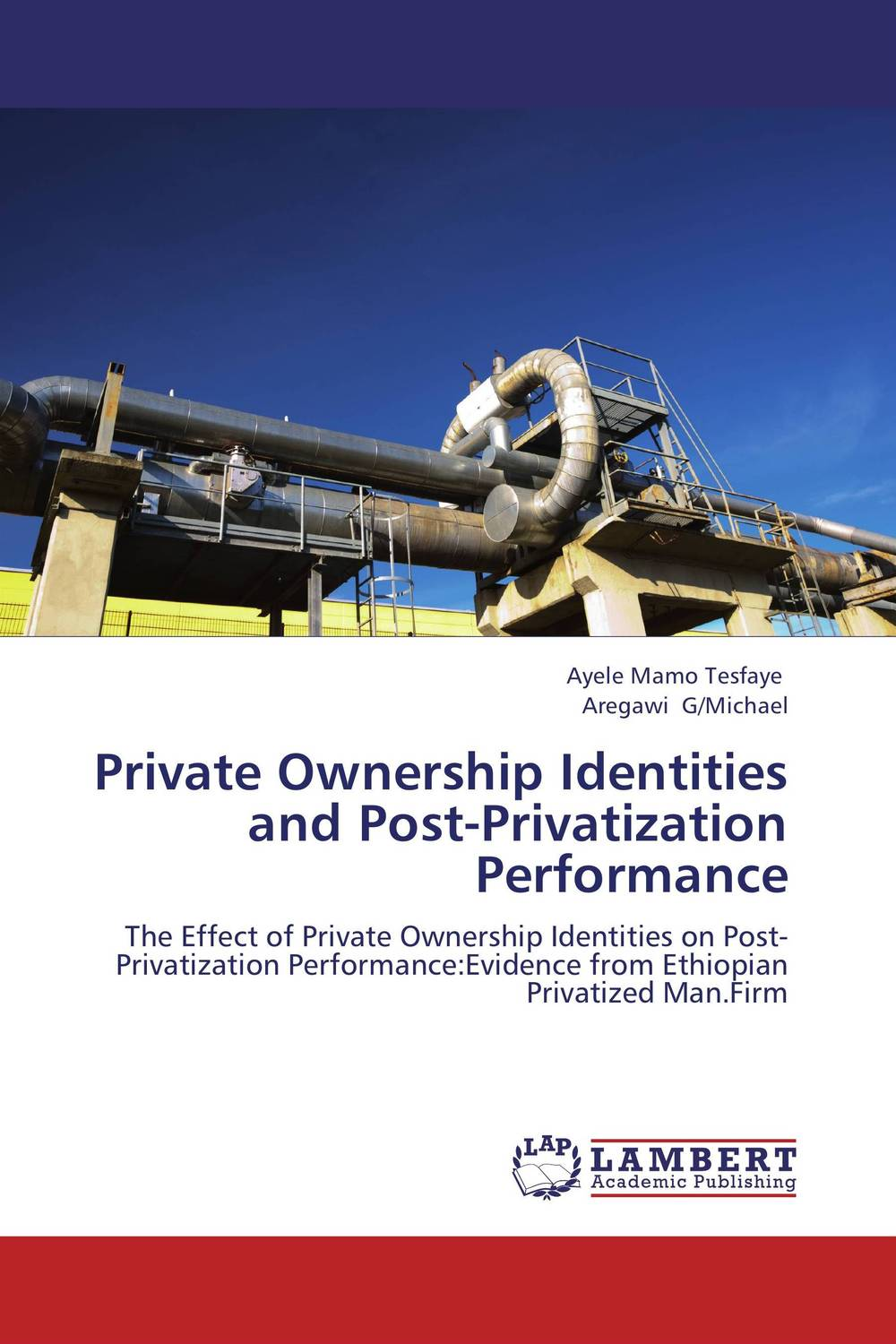 Private Ownership Identities and Post-Privatization Performance privatization and firms performance in nigeria
