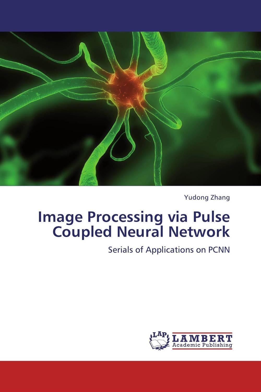 купить Image Processing via Pulse Coupled Neural Network недорого