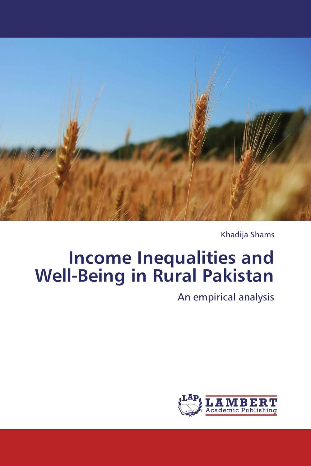 Income Inequalities and Well-Being in Rural Pakistan economic methodology