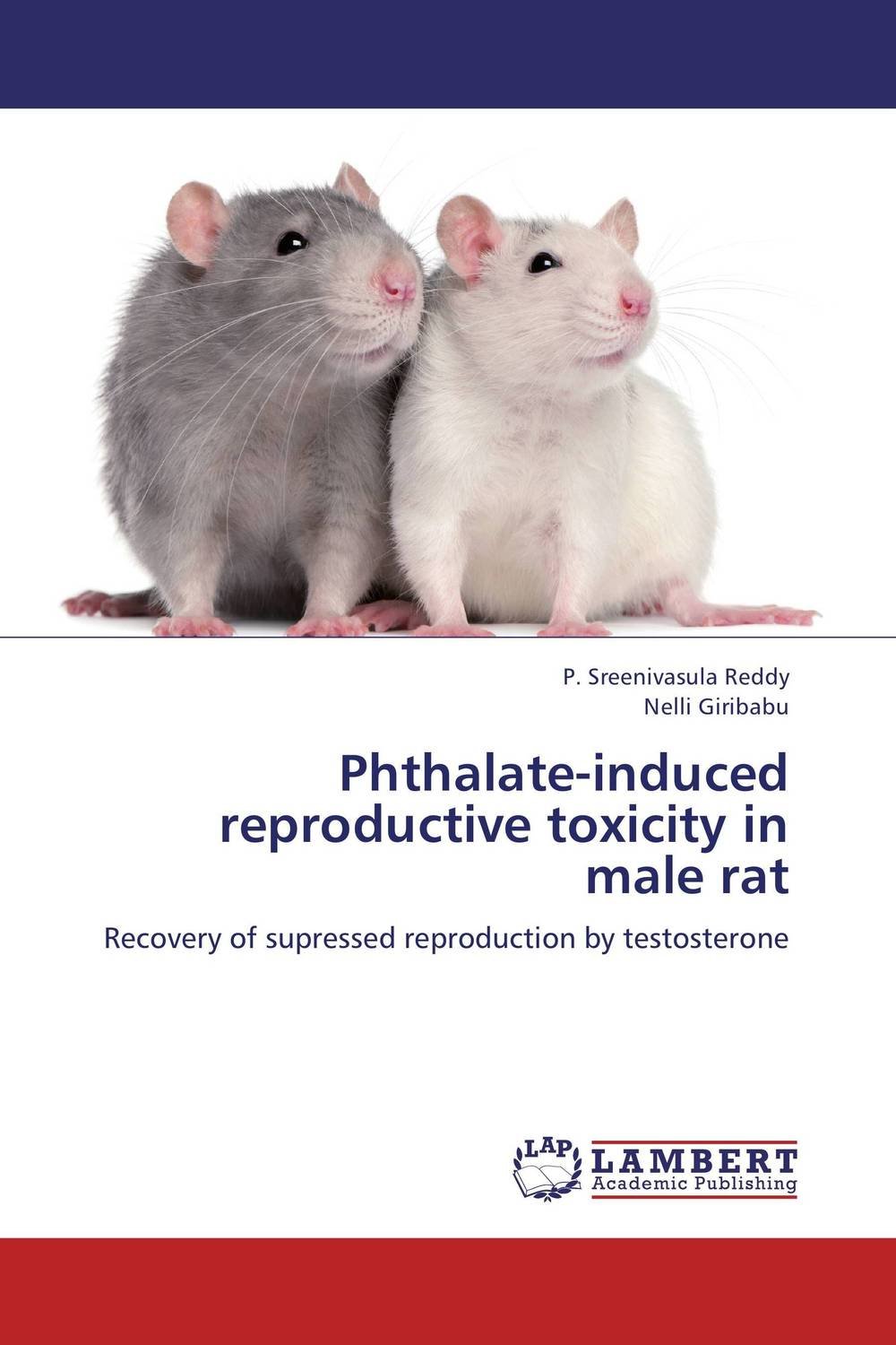 Phthalate-induced reproductive toxicity in male rat male female reproductive system model anatomy of the male female reproductive system human reproductive system gasen rzmn028