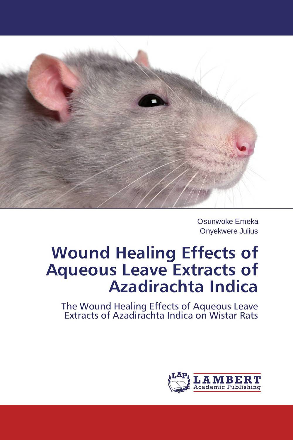 Wound Healing Effects of Aqueous Leave Extracts of Azadirachta Indica functional capacity of mango leave extracts