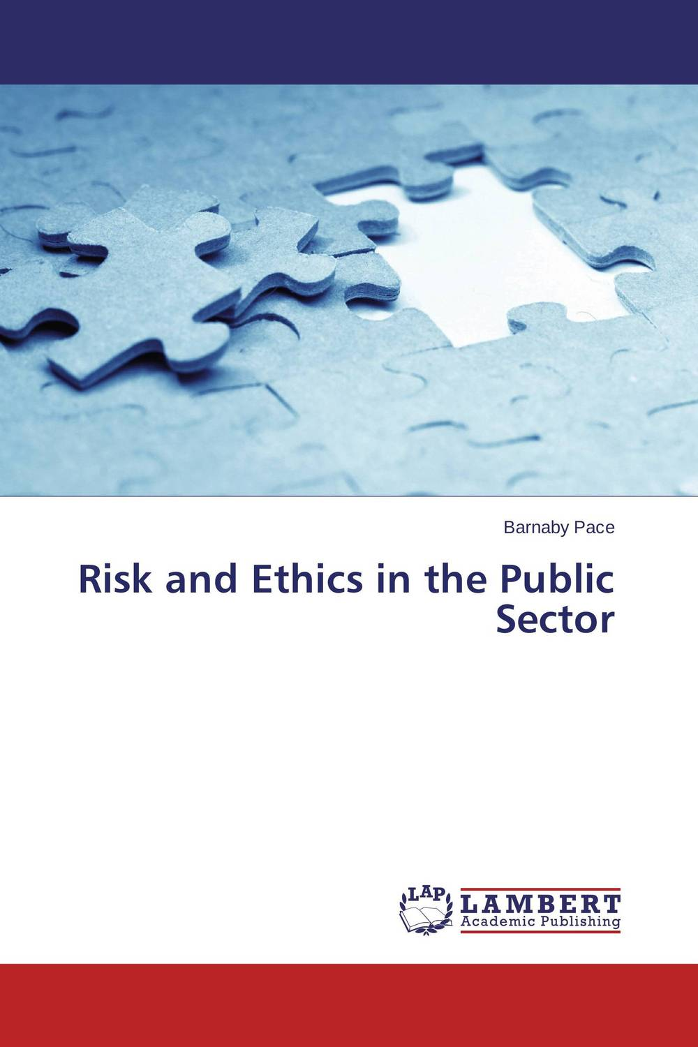 Risk and Ethics in the Public Sector