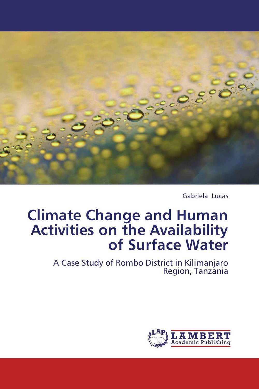 Climate Change and Human Activities on the Availability of Surface Water bistro 1 0 1875 01