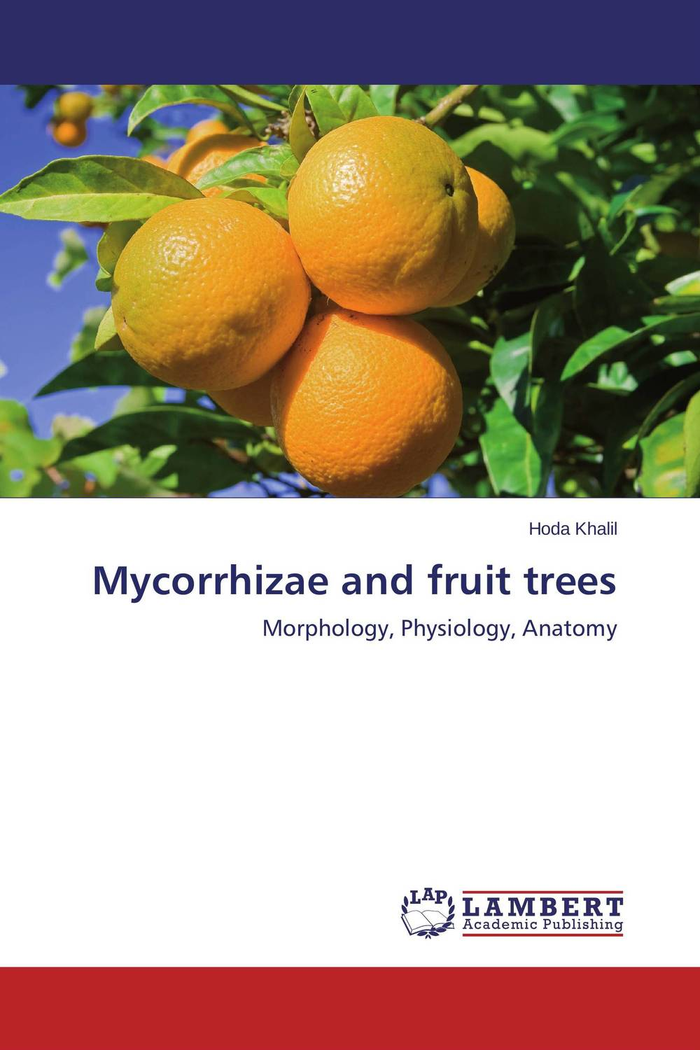 Mycorrhizae and fruit trees coloring of trees