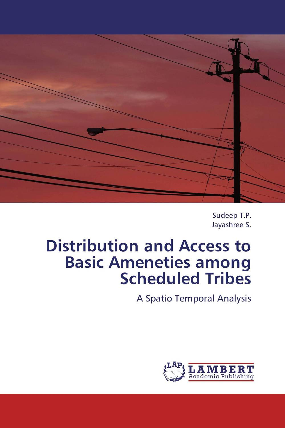 Distribution and Access to Basic Ameneties among Scheduled Tribes bir pal singh social inequality and exclusion of scheduled tribes in india