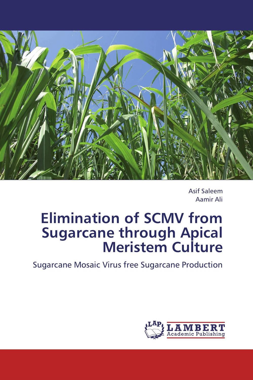 Elimination of SCMV from Sugarcane through Apical Meristem Culture tissue culture of citrus reticulata blanco kinnow