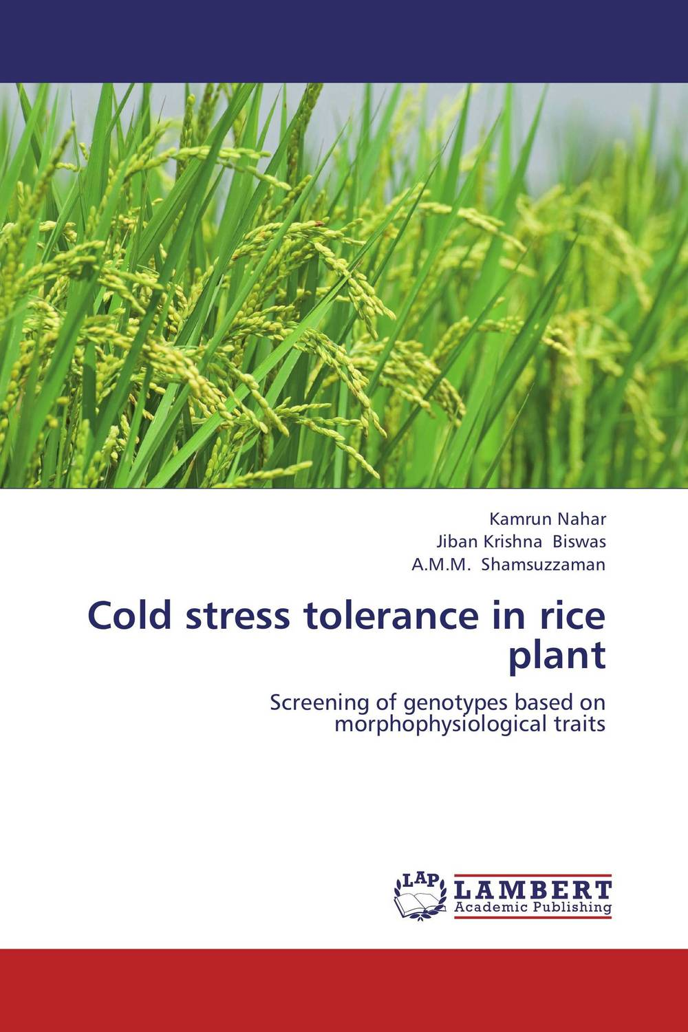 Cold stress tolerance in rice plant сумка wei emperor paul 518 11 2015