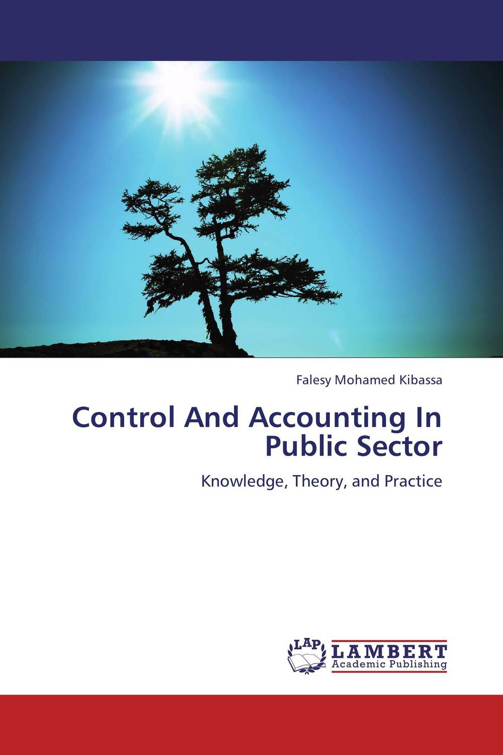 Control And Accounting In Public Sector