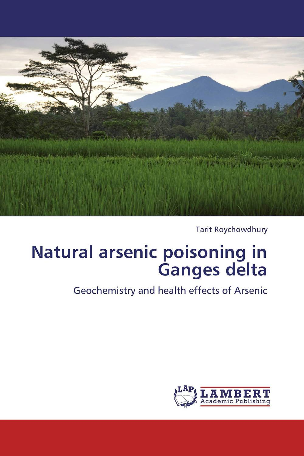 Natural arsenic poisoning in Ganges delta removal of ammonia arsenic and dyes from water by ozone microbubbles