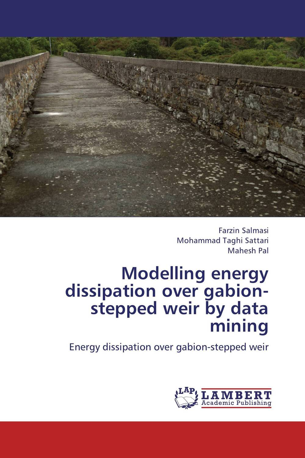 Modelling energy dissipation over gabion-stepped weir by data mining the halloween tree