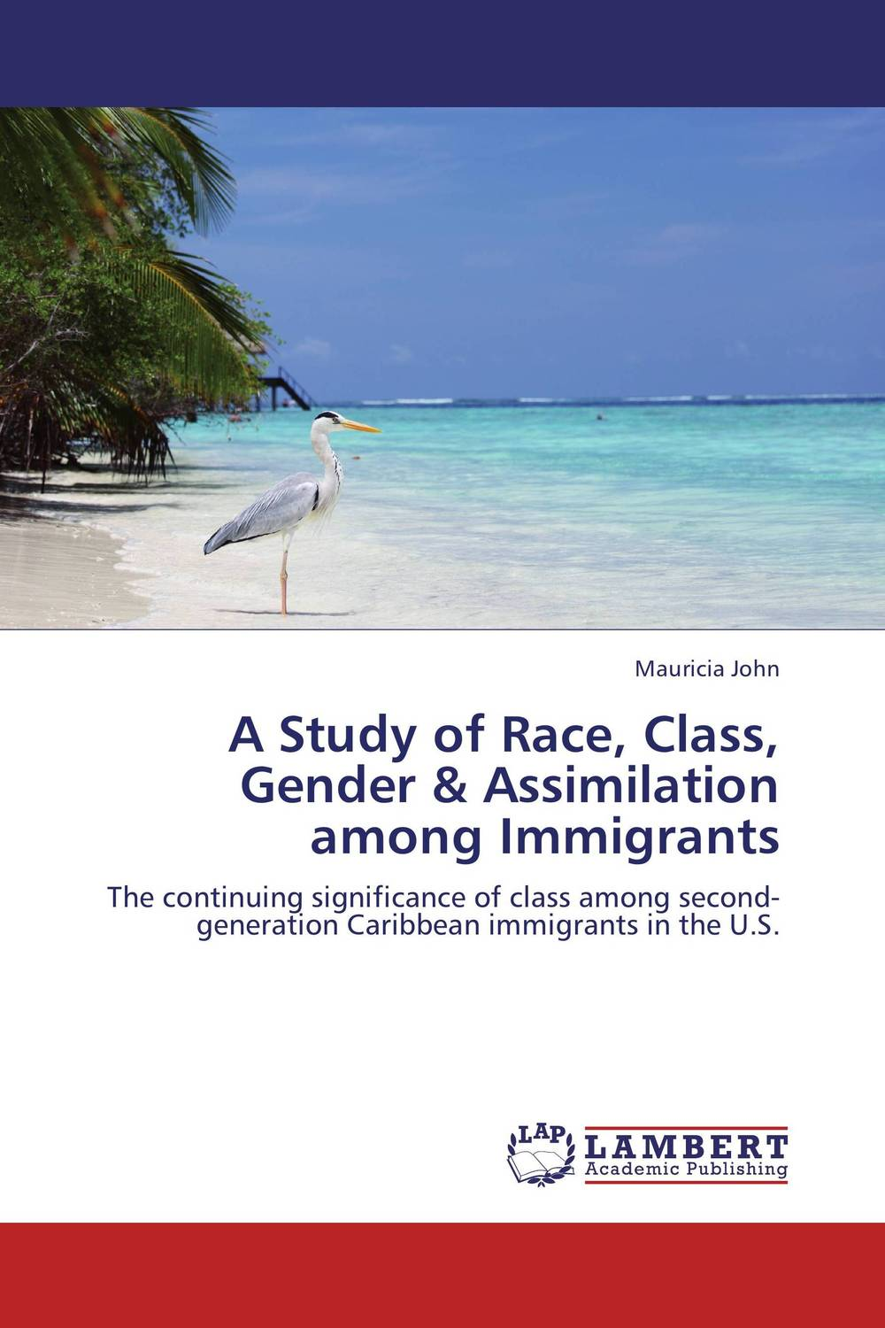 A Study of Race, Class, Gender & Assimilation among Immigrants driven to distraction