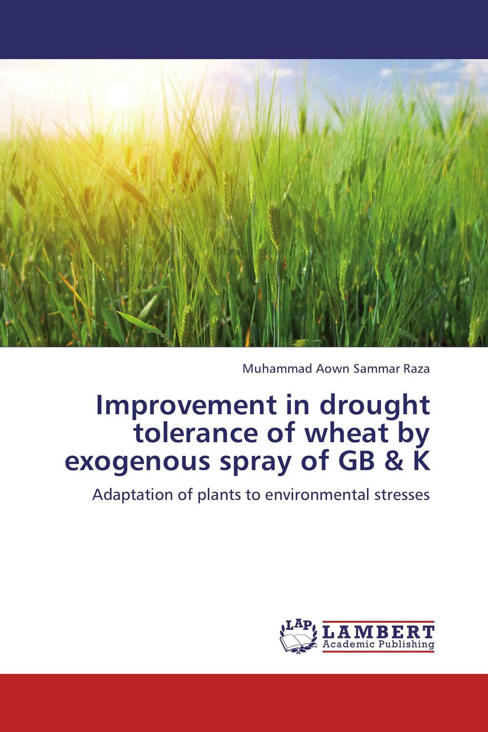 Improvement in drought tolerance of wheat by exogenous spray of GB & K breeding for improvement of water stress tolerance in bread wheat