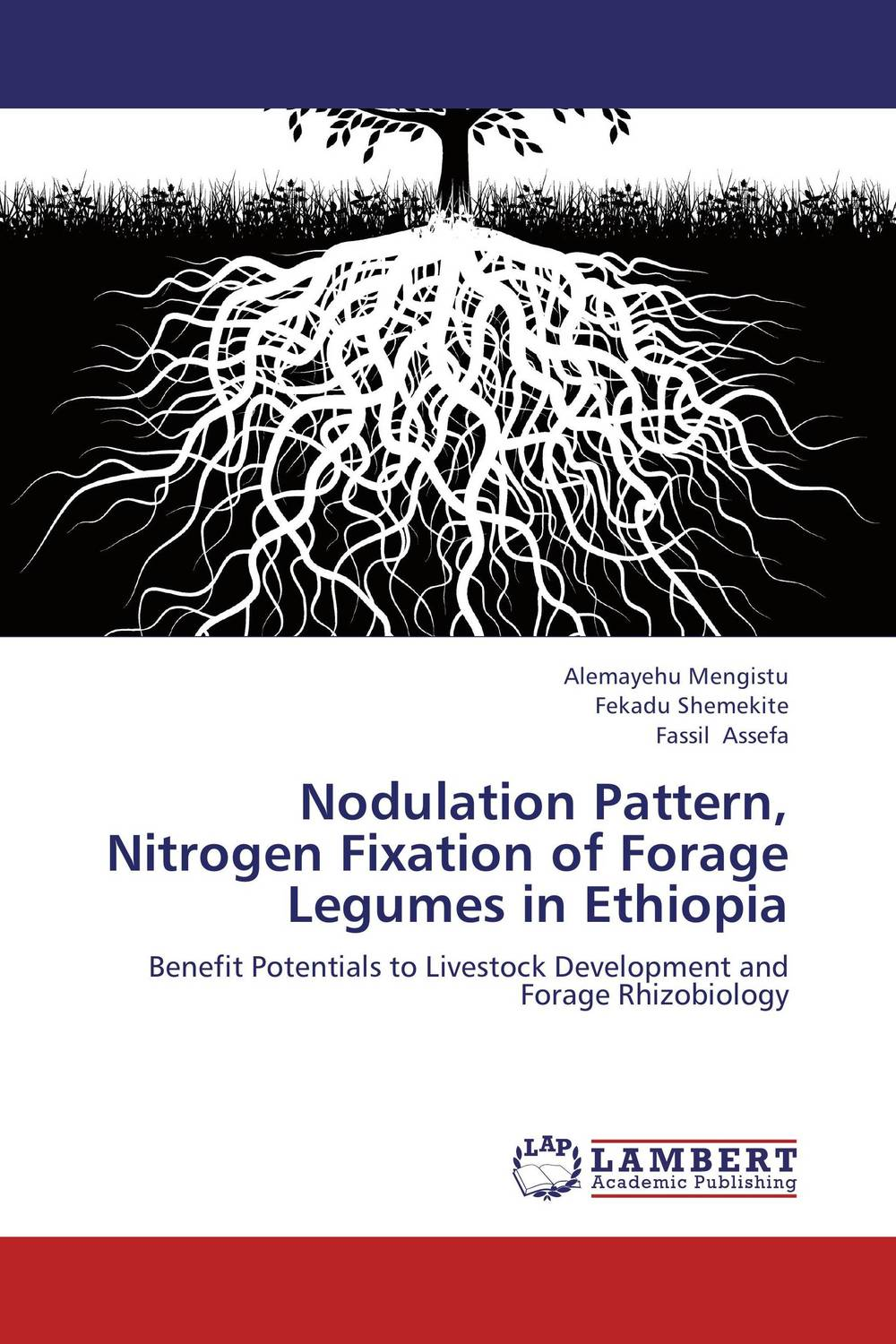 Nodulation Pattern, Nitrogen Fixation of Forage Legumes in Ethiopia ravindra kumar jain nod factors and nodulation process by rhizobia in cicer arietinum