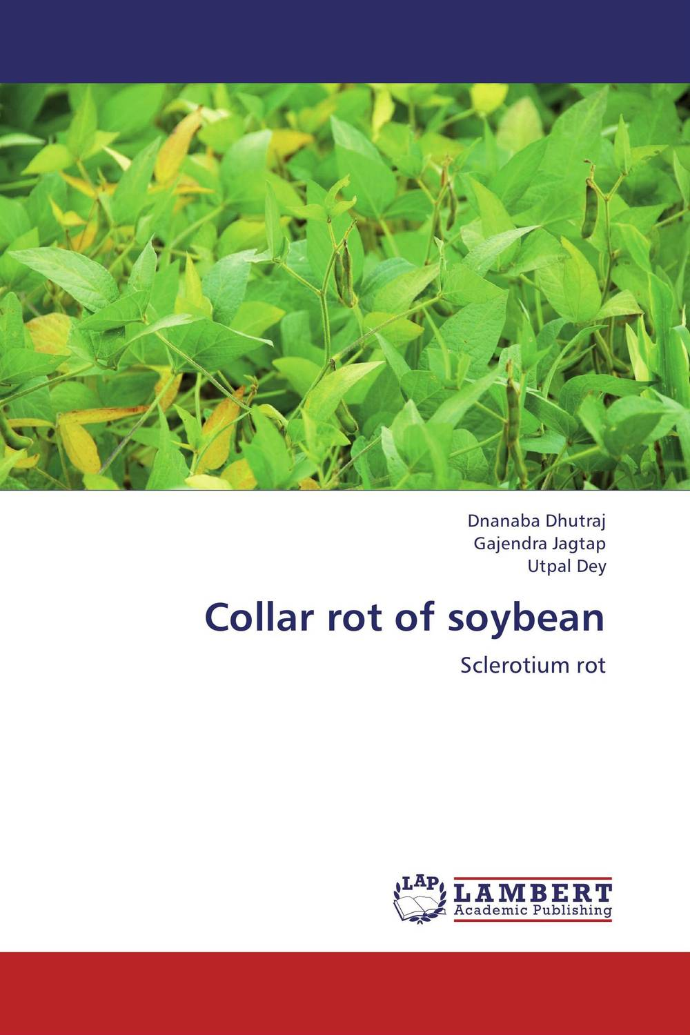 Collar rot of soybean found in brooklyn