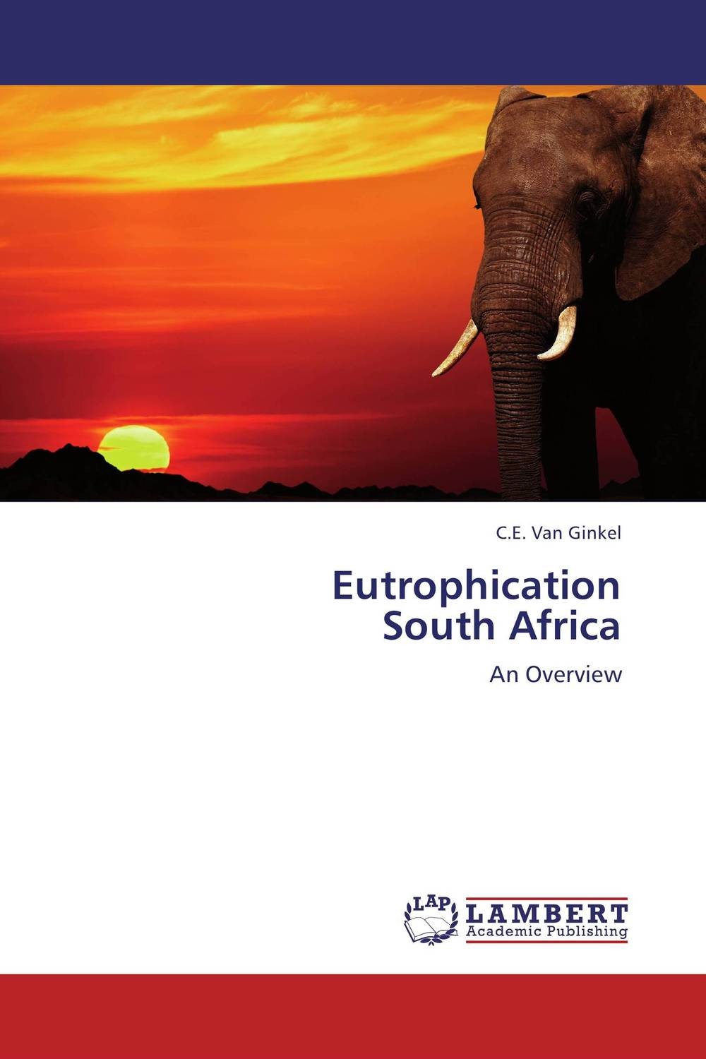 Eutrophication South Africa arcade ndoricimpa inflation output growth and their uncertainties in south africa empirical evidence from an asymmetric multivariate garch m model