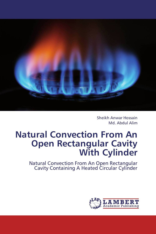 купить Natural Convection From An Open Rectangular Cavity With Cylinder недорого