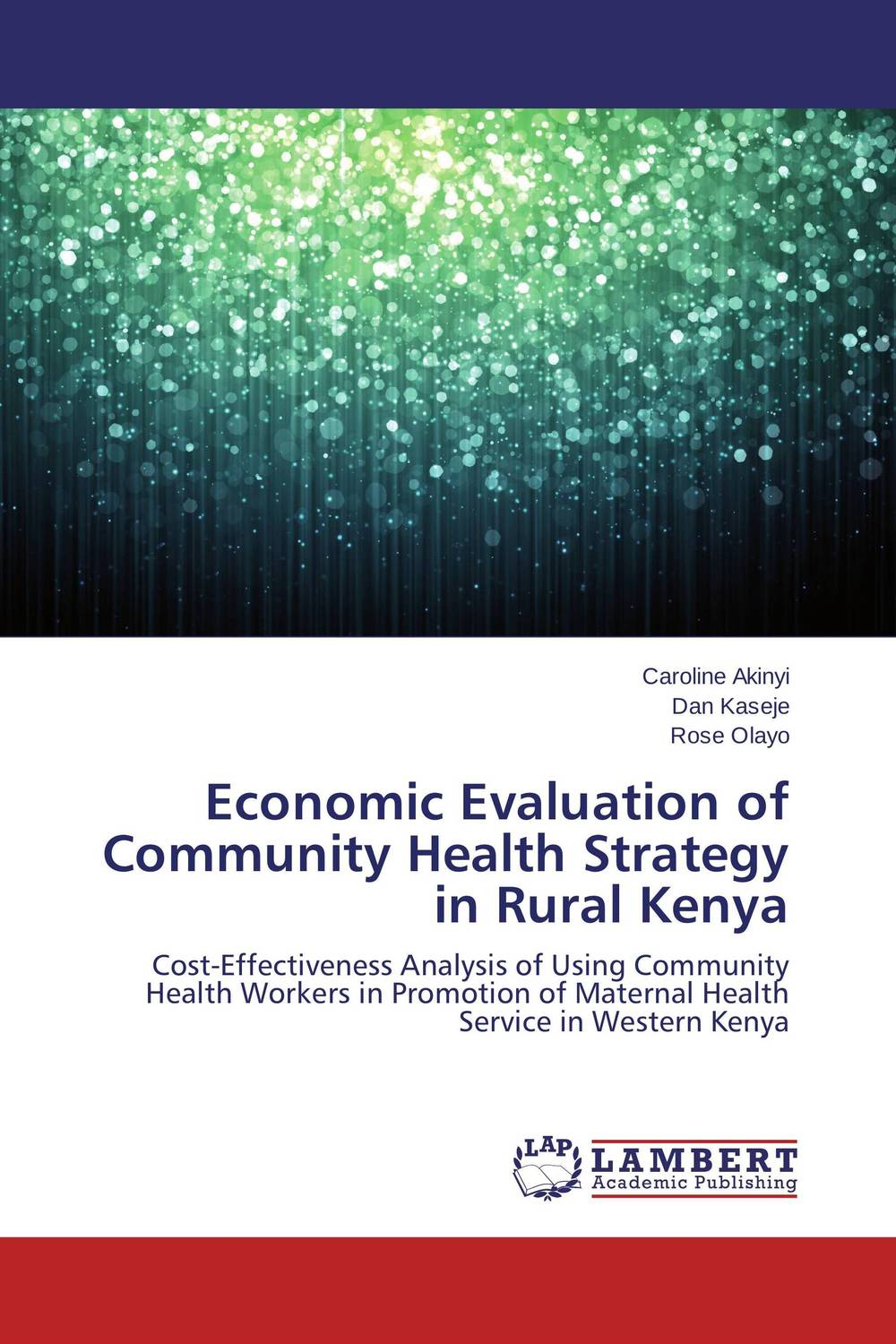 Economic Evaluation of Community Health Strategy in Rural Kenya maureen a adoyo health service delivery in kenya