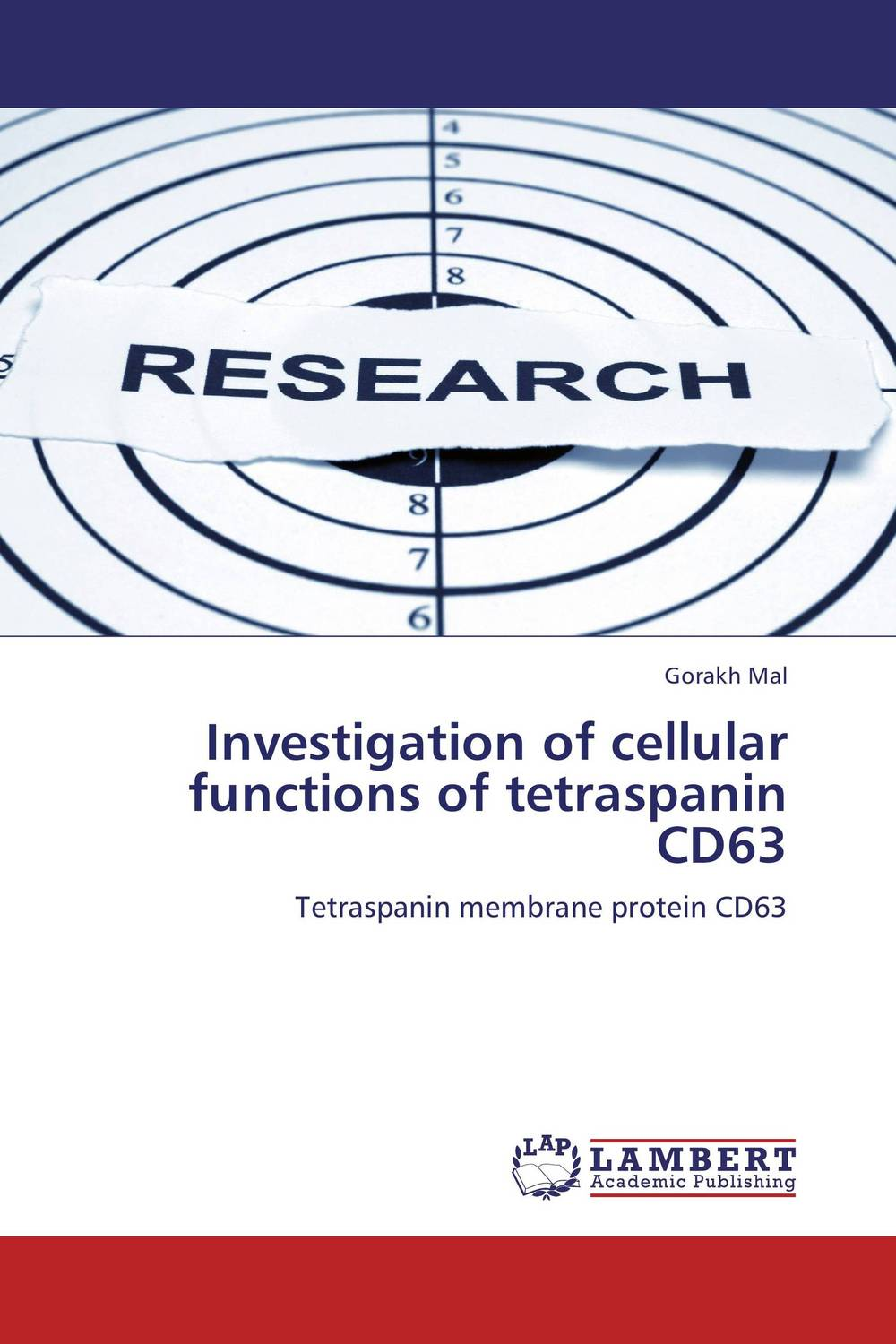 Investigation of cellular functions of tetraspanin  CD63