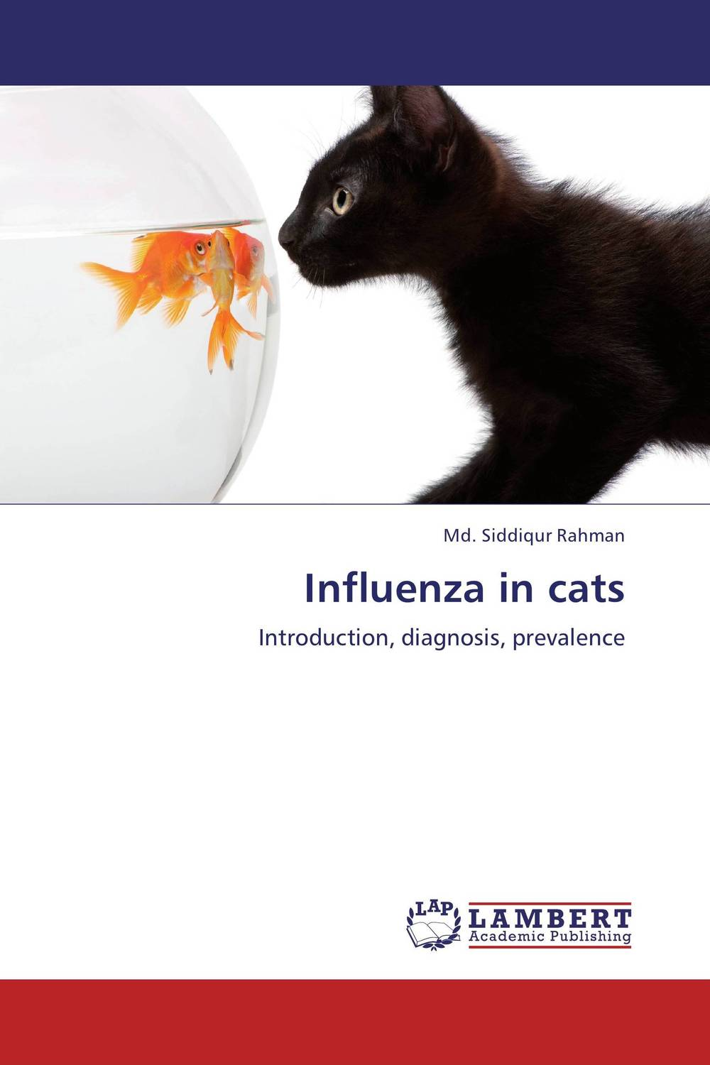 Influenza in cats stick cat cats in the city