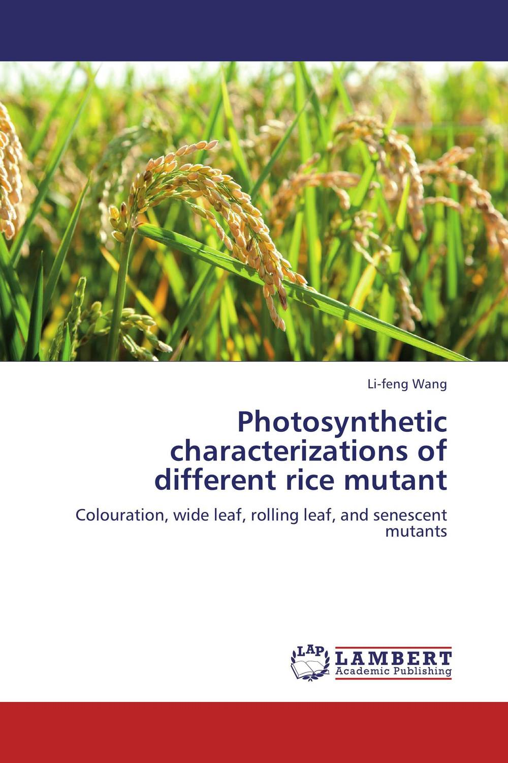 Photosynthetic characterizations of different rice mutant new mutants
