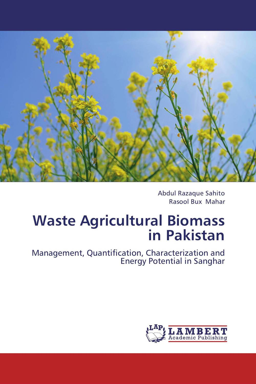Waste Agricultural Biomass in Pakistan amal owis and yasser el tahlawy residues and wastes biomass in egypt