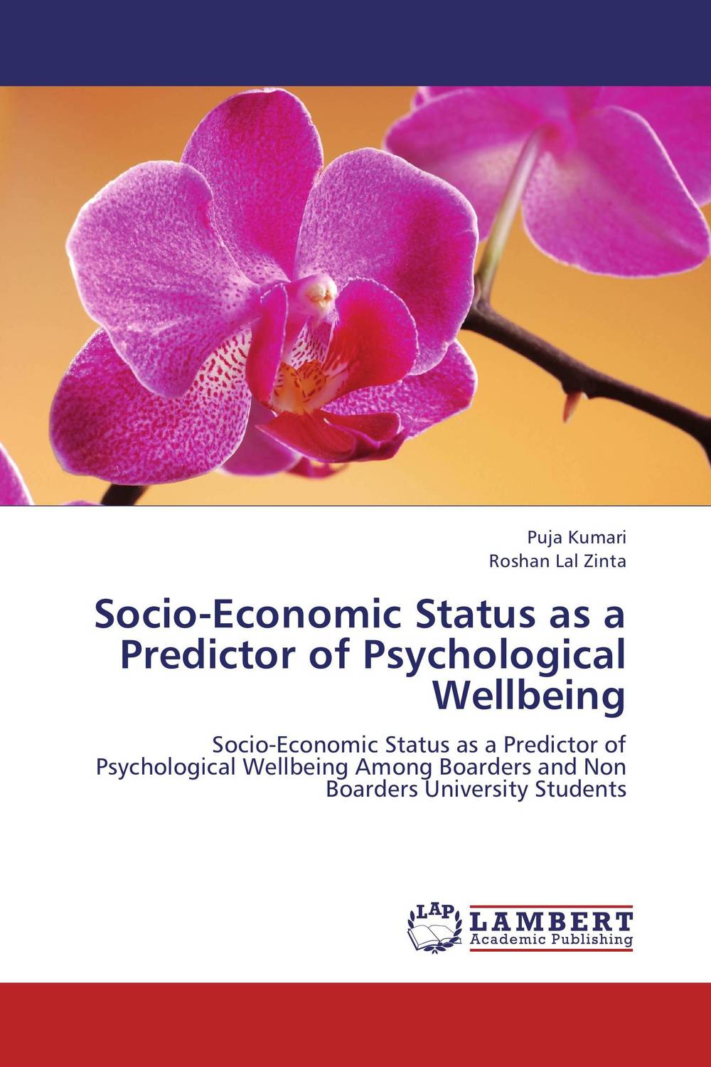 Socio-Economic Status as a Predictor of Psychological Wellbeing gender and socio economic wellbeing of older persons in nigeria