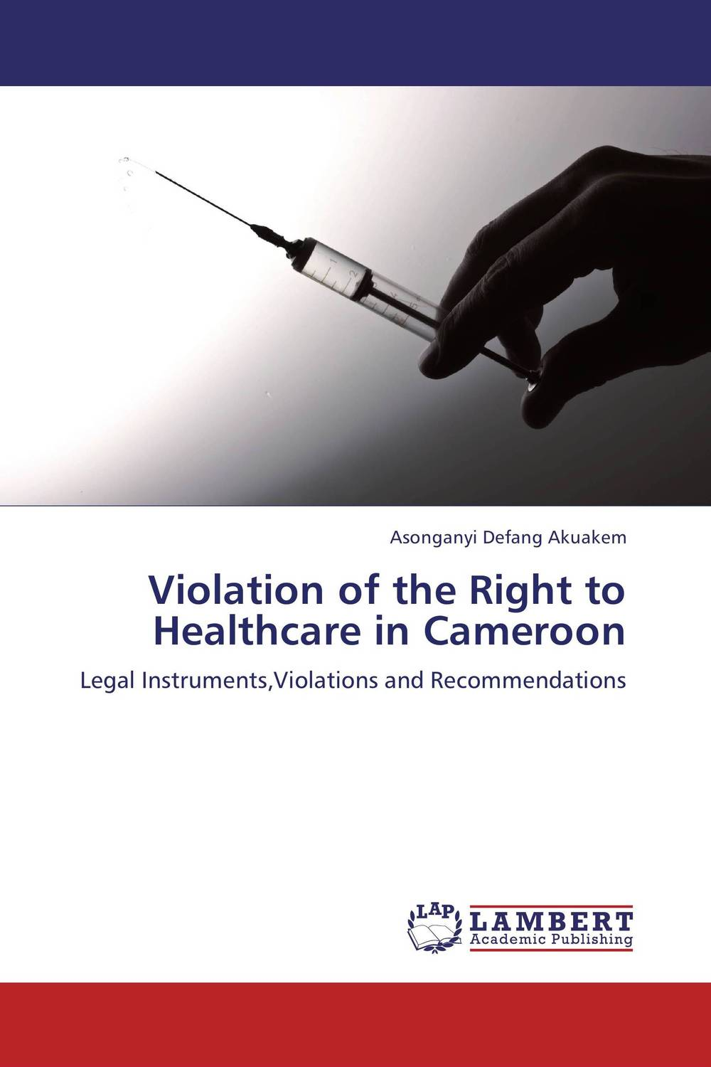 Violation of the Right to Healthcare in Cameroon private sector provision of primary healthcare in ghana