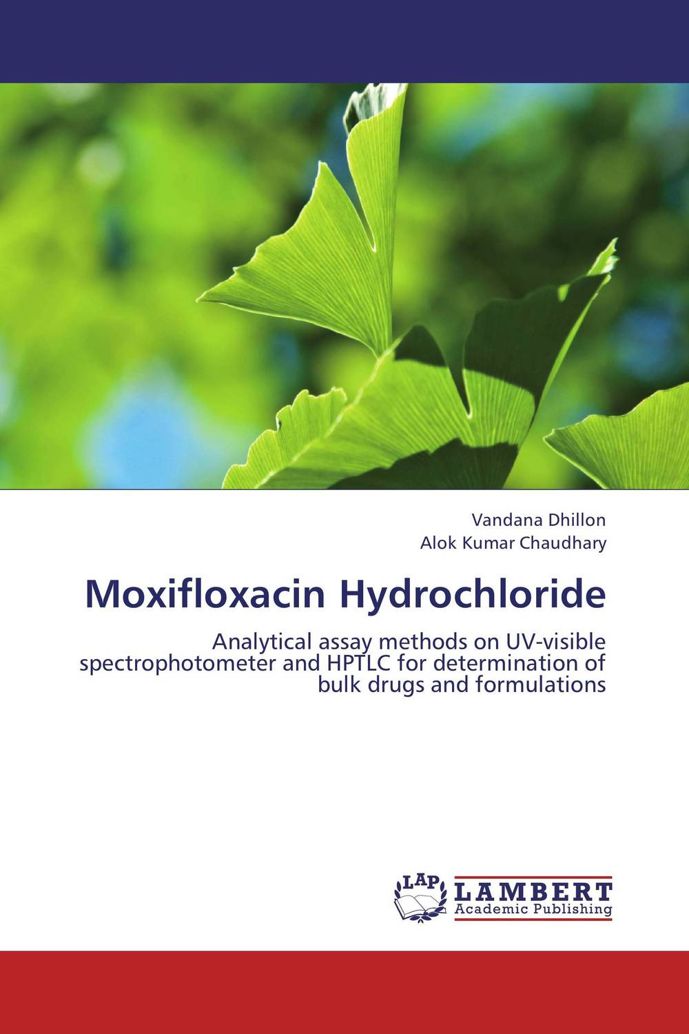 Moxifloxacin Hydrochloride the submission